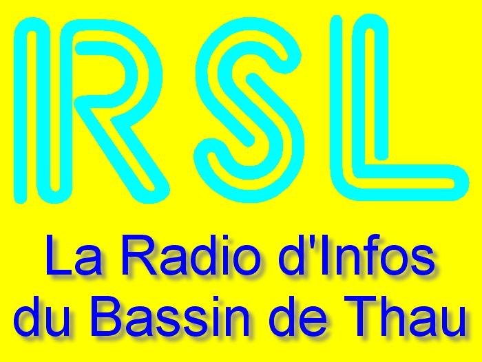 Logo intro site