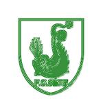 Logofcs